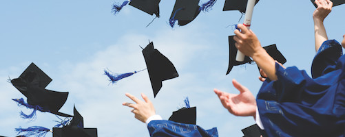 How to Approach IB Diploma Subject Choices? - Aegis Advisors